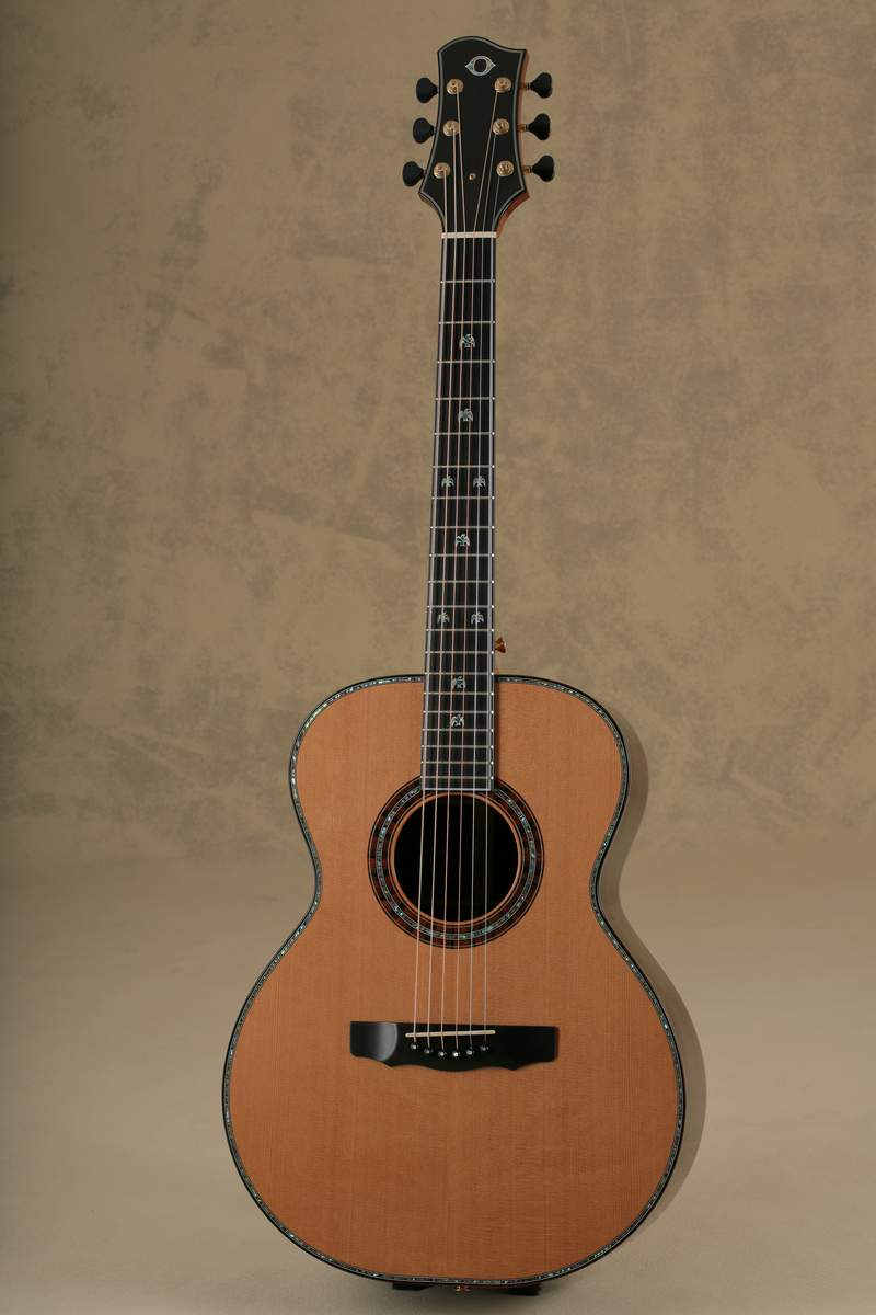 The James Taylor Signature Models | James A. Olson Guitars